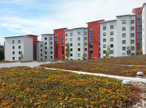Gepflegte Wohnsiedlung mit Mehrfamilienhäusern